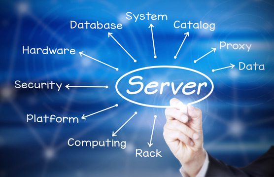 services_system